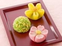 ★和菓子販売STAFF★